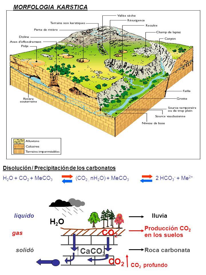 CO2 CO2 Phases H2O CaCO3 MORFOLOGIA KARSTICA liquido lluvia
