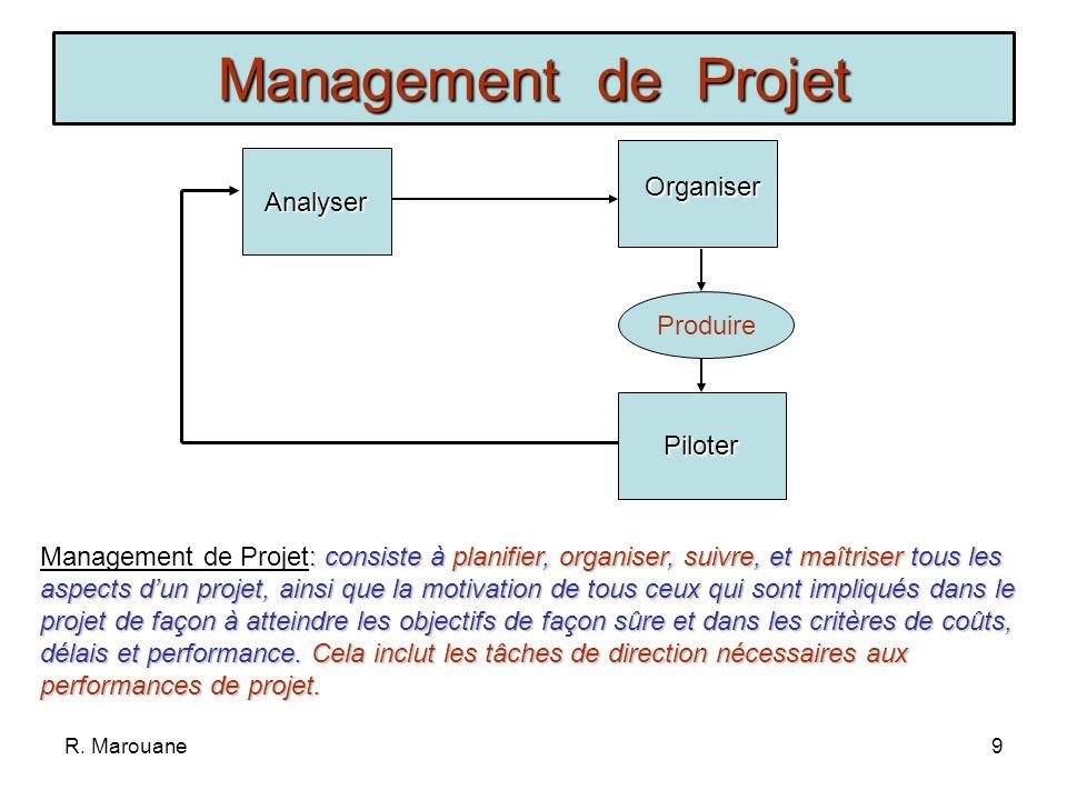 Management de Projet Analyser Organiser Produire Piloter