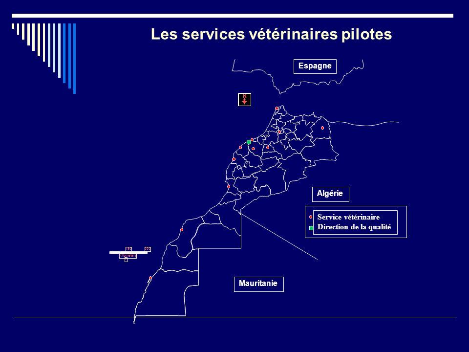 Les services vétérinaires pilotes
