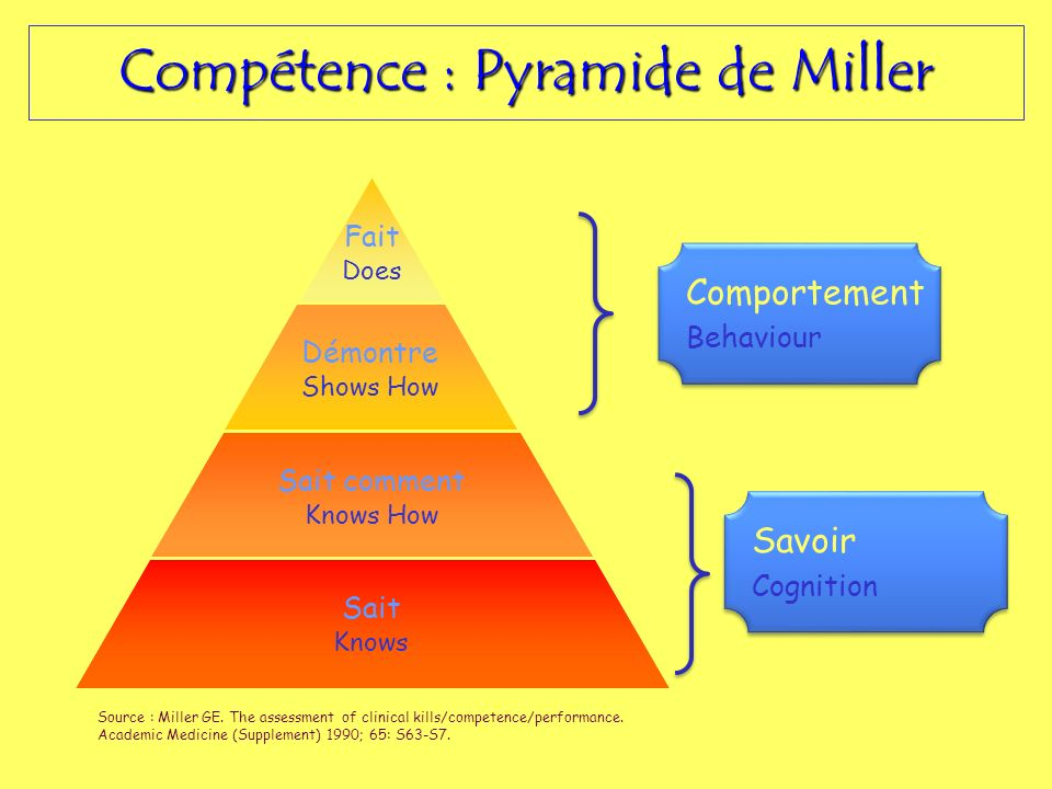 Compétence : Pyramide de Miller
