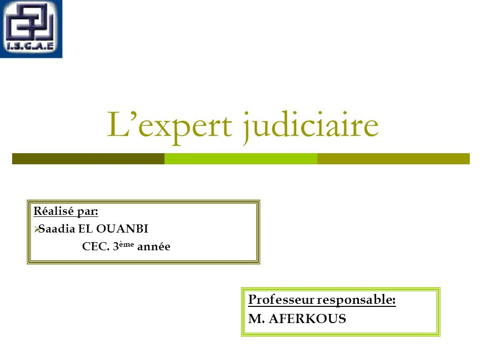 L'expert judiciaire Professeur responsable: M. AFERKOUS Réalisé par: