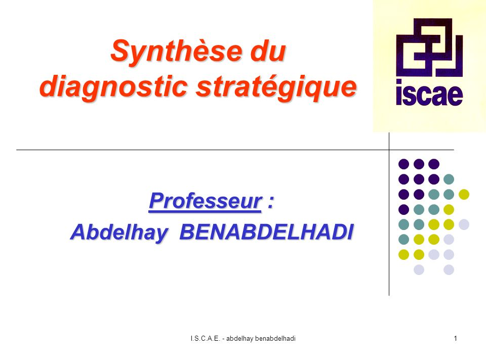 Synthèse du diagnostic stratégique