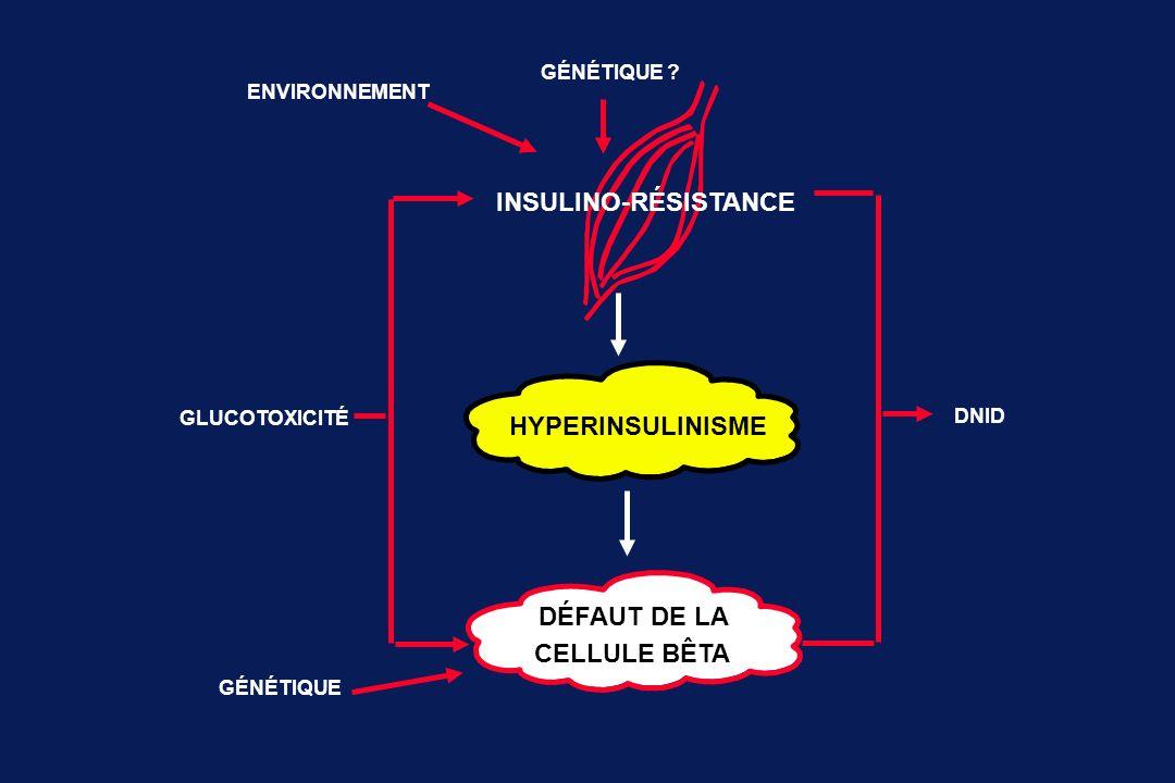 INSULINO-RÉSISTANCE HYPERINSULINISME DÉFAUT DE LA CELLULE BÊTA