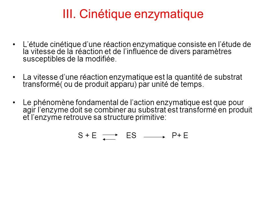 III. Cinétique enzymatique