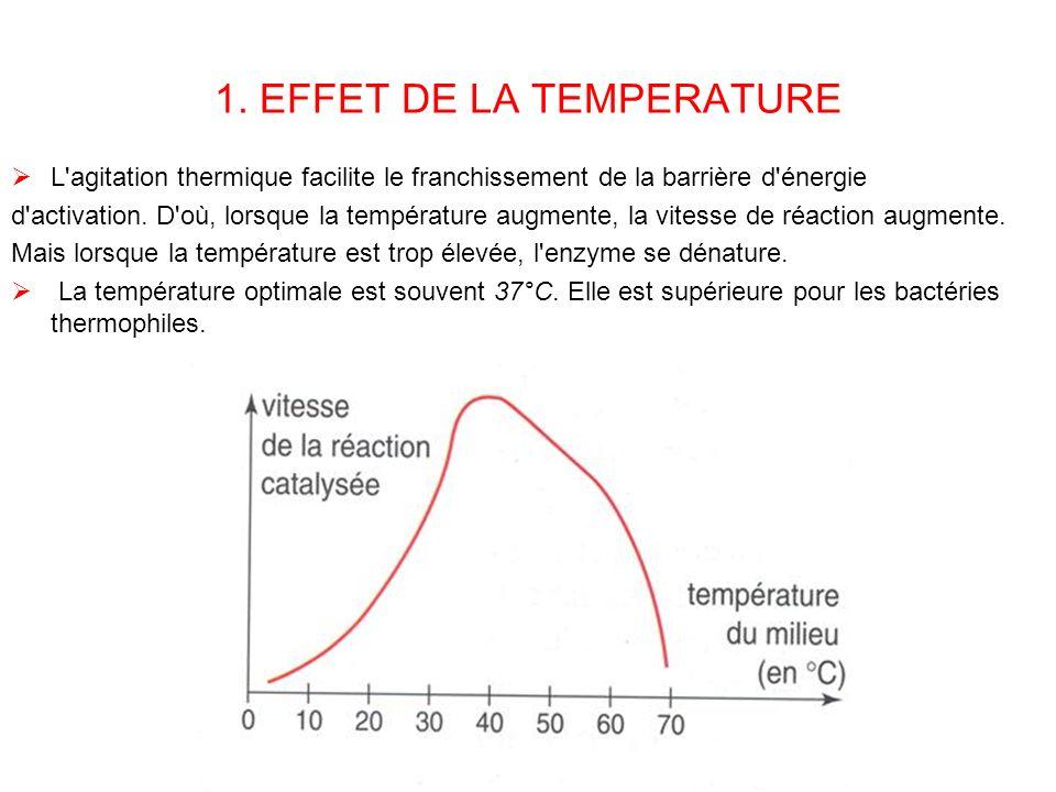 1. EFFET DE LA TEMPERATURE