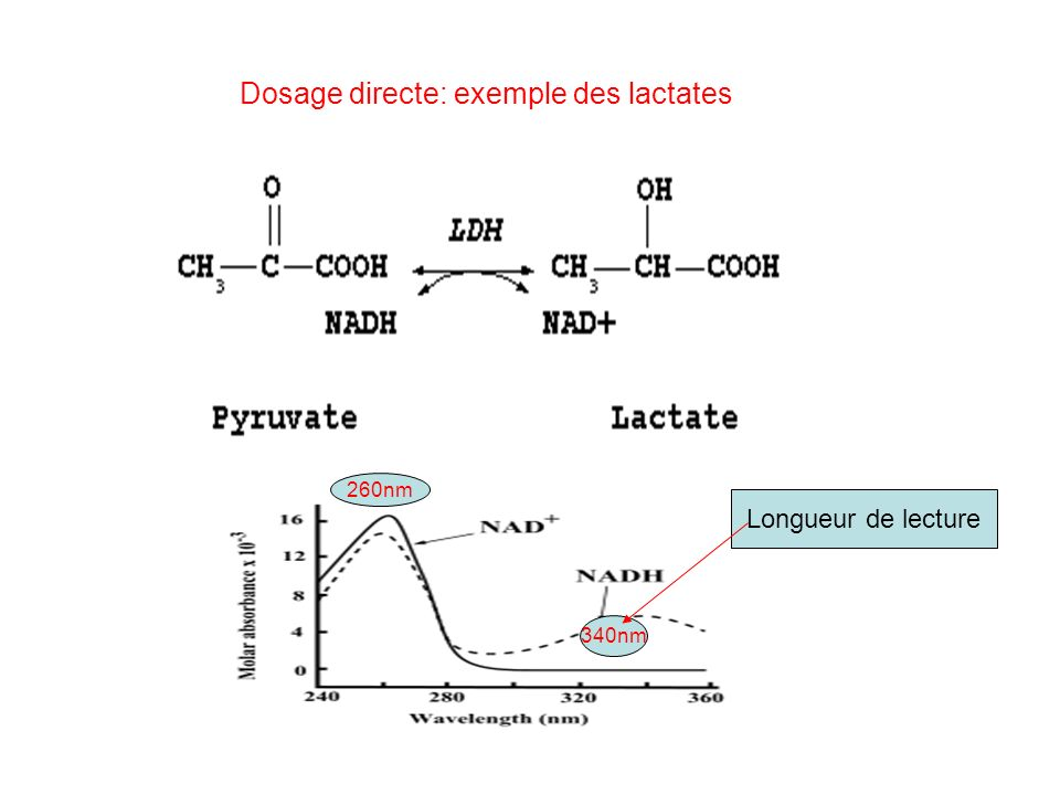 Dosage directe: exemple des lactates