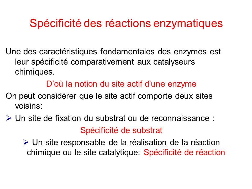 Spécificité des réactions enzymatiques