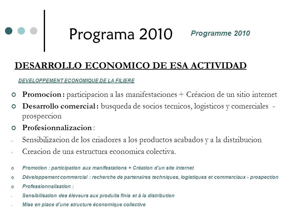 Programa 2010 DESARROLLO ECONOMICO DE ESA ACTIVIDAD