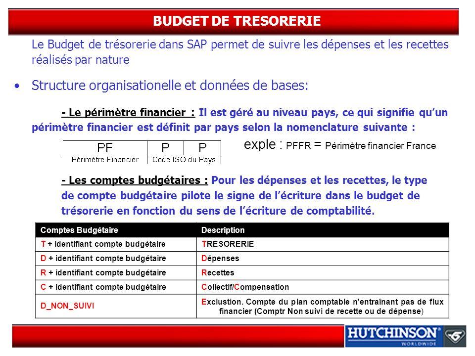 BUDGET DE TRESORERIE Le Budget de trésorerie dans SAP permet de suivre les dépenses et les recettes réalisés par nature.