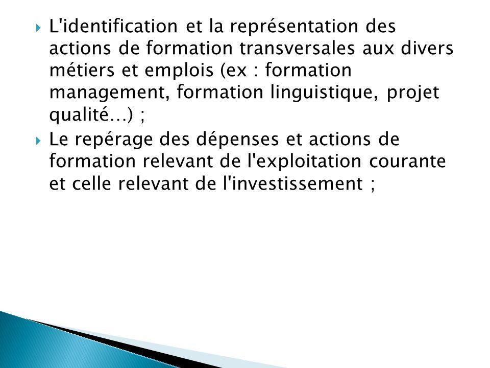 L identification et la représentation des actions de formation transversales aux divers métiers et emplois (ex : formation management, formation linguistique, projet qualité…) ;
