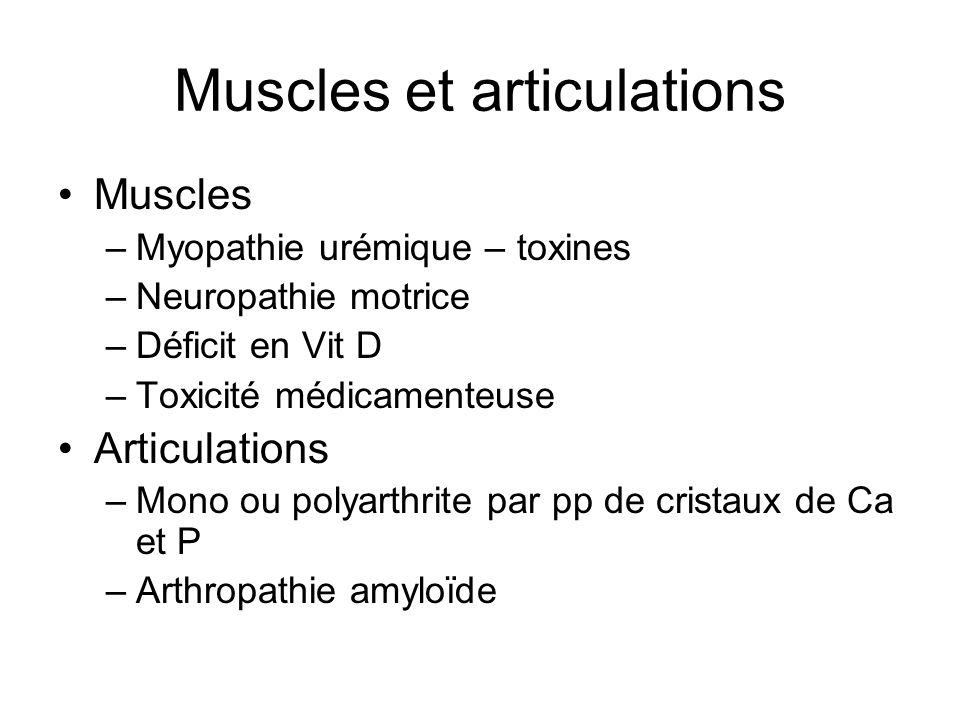 Muscles et articulations
