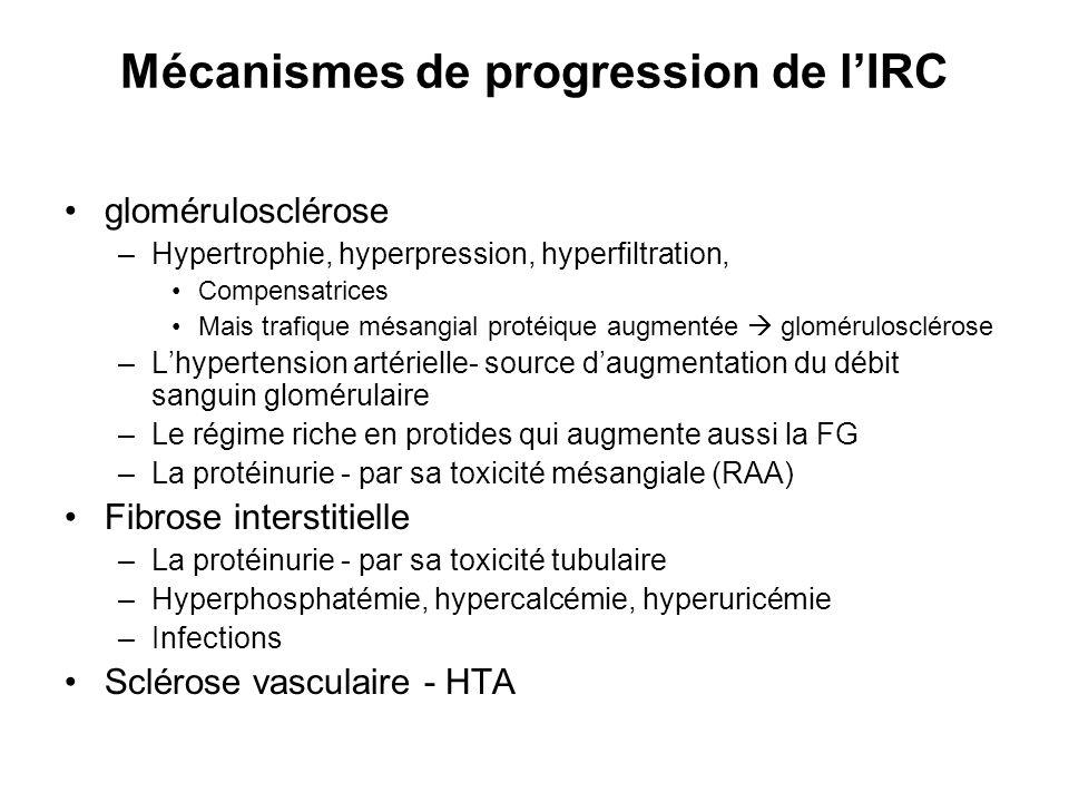 Mécanismes de progression de l'IRC