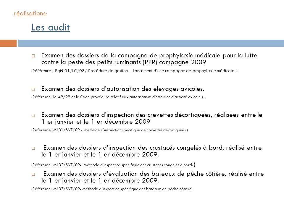 Les audit réalisations: