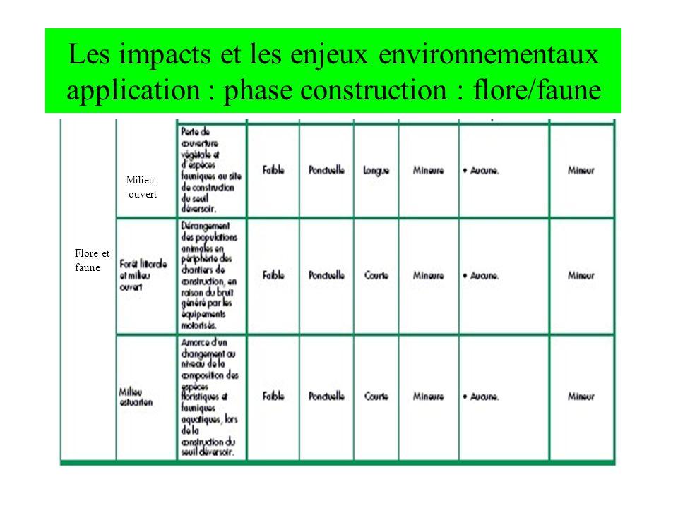 Les impacts et les enjeux environnementaux application : phase construction : flore/faune