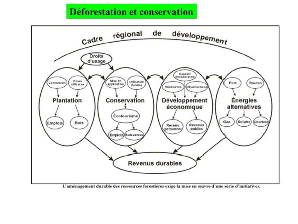 Déforestation et conservation
