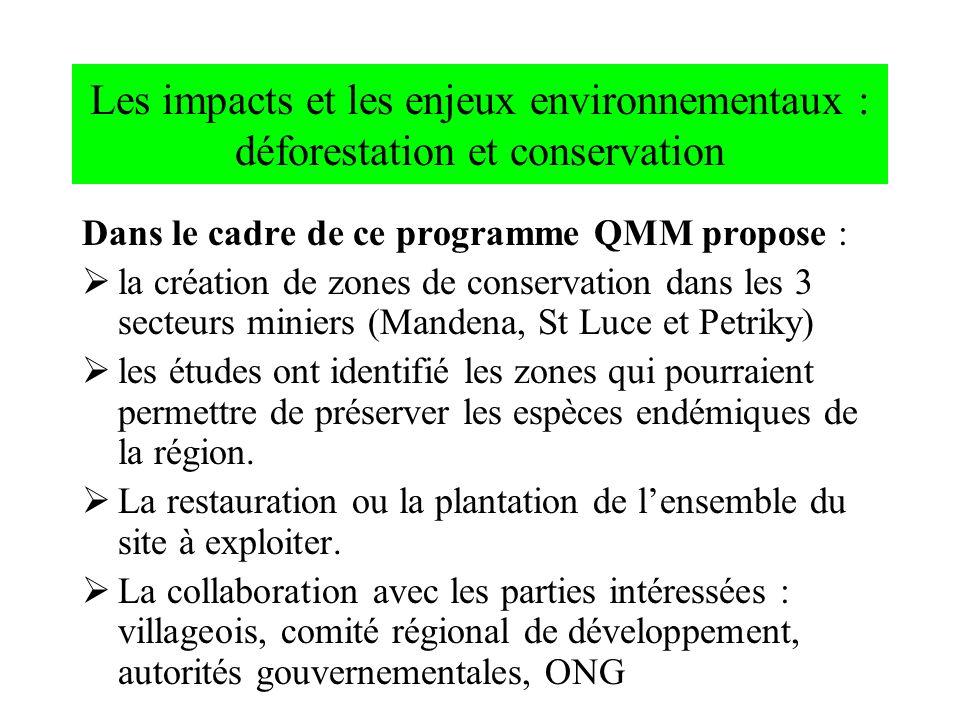 Les impacts et les enjeux environnementaux : déforestation et conservation