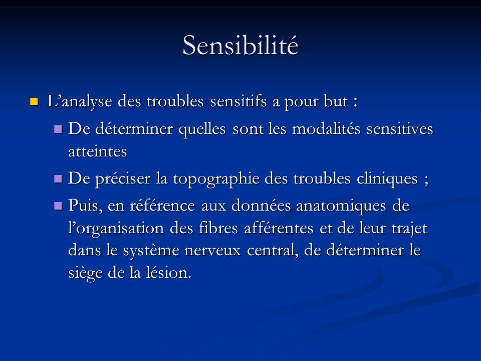 Sensibilité L'analyse des troubles sensitifs a pour but :