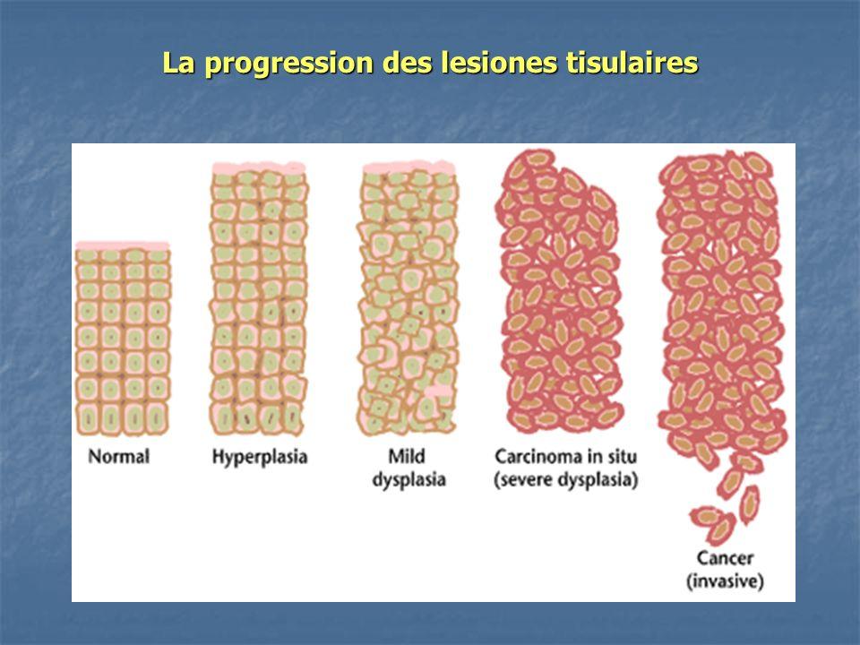 La progression des lesiones tisulaires