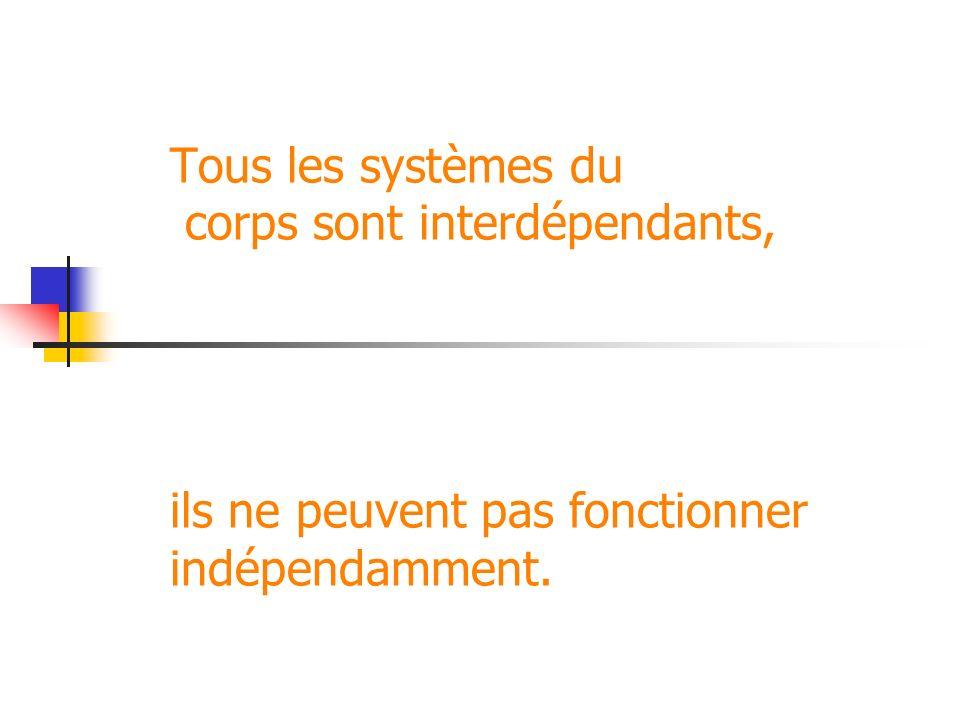 Tous les systèmes du corps sont interdépendants, ils ne peuvent pas fonctionner indépendamment.