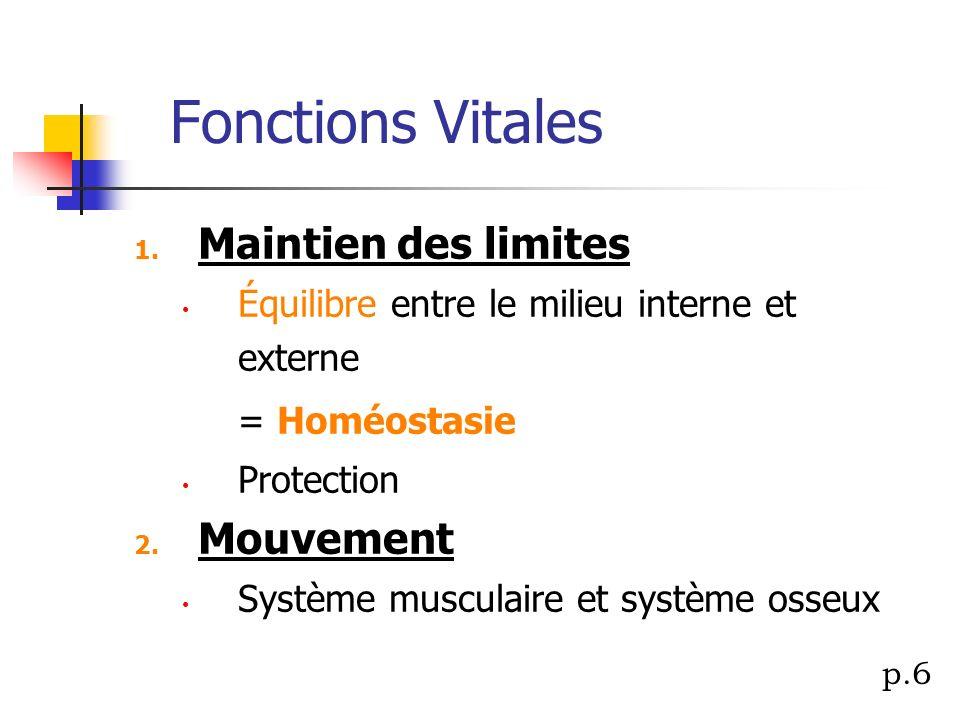 Fonctions Vitales Maintien des limites Mouvement