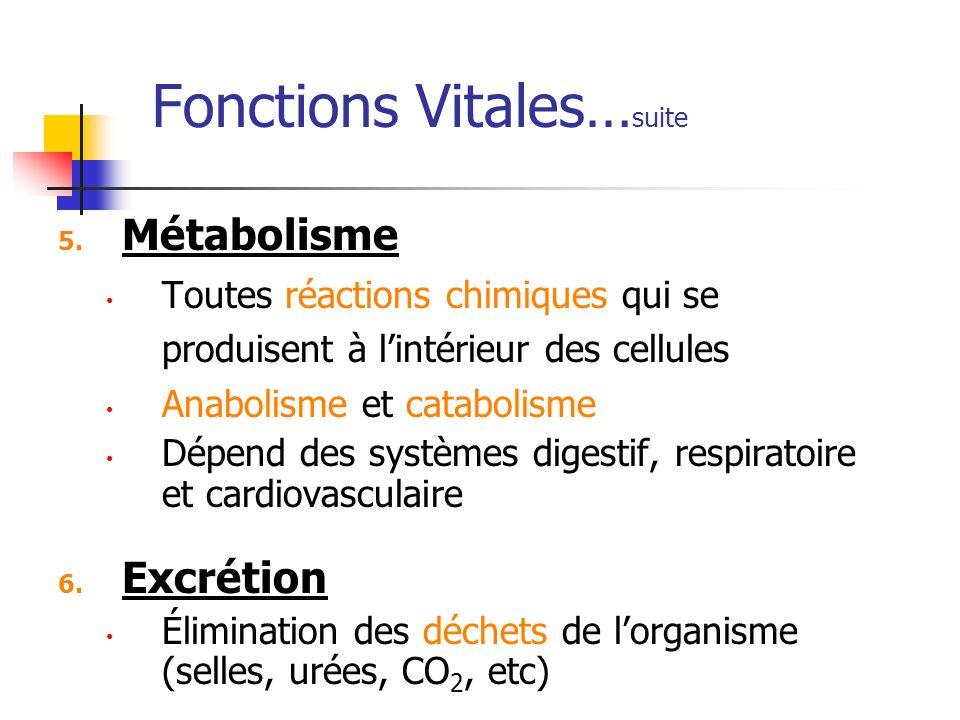 Fonctions Vitales…suite