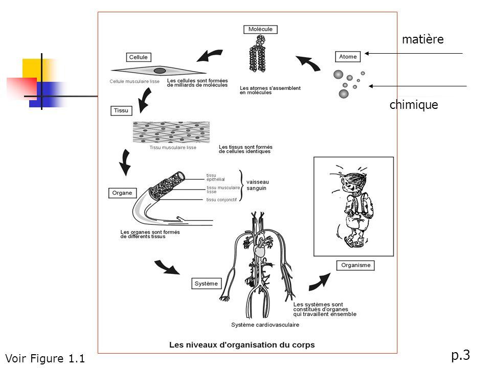 matière chimique p.3 Voir Figure 1.1