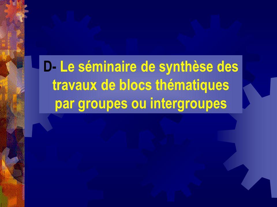 D- Le séminaire de synthèse des travaux de blocs thématiques par groupes ou intergroupes