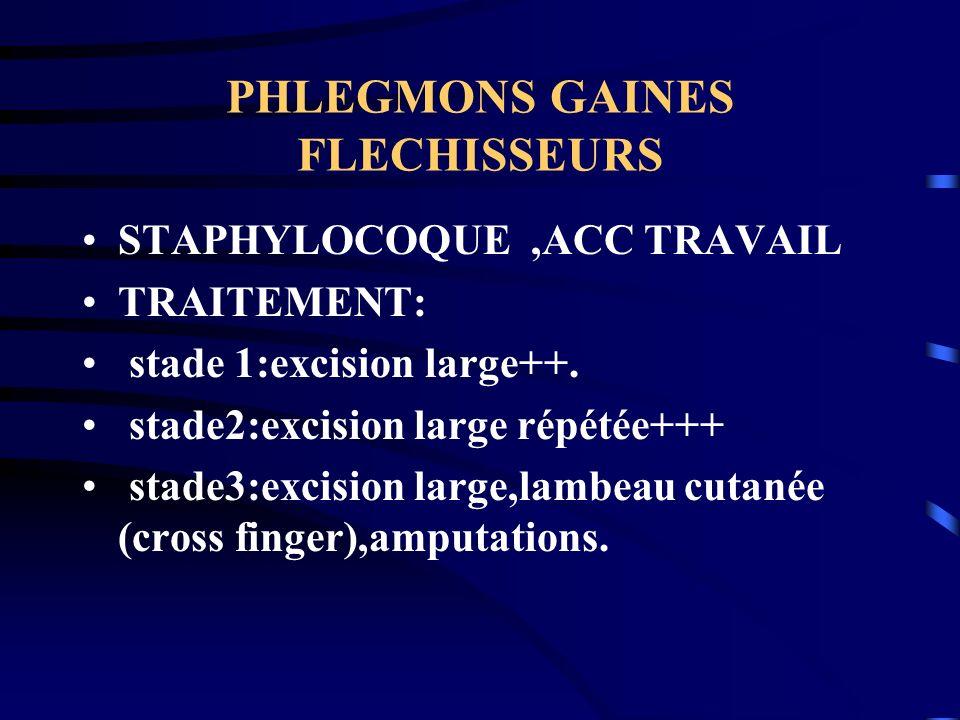 PHLEGMONS GAINES FLECHISSEURS