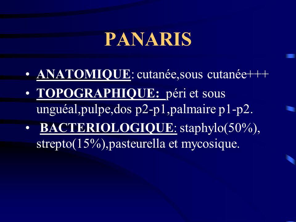 PANARIS ANATOMIQUE: cutanée,sous cutanée+++