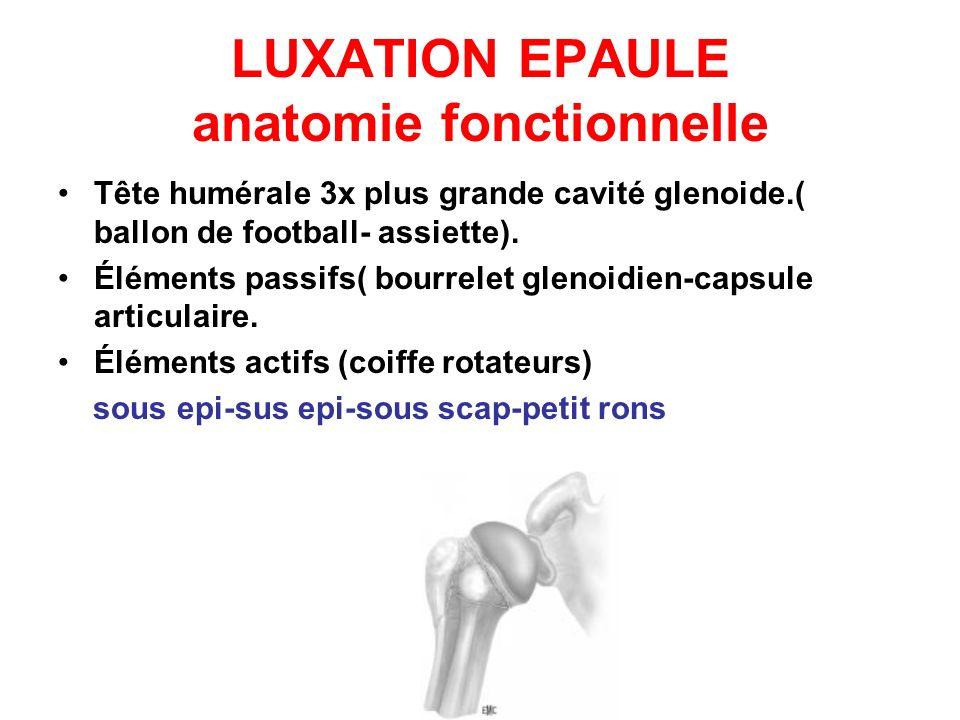 LUXATION EPAULE anatomie fonctionnelle