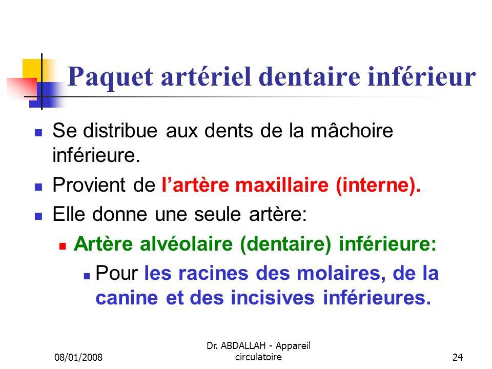Paquet artériel dentaire inférieur