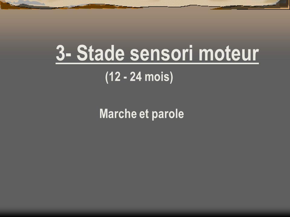 3- Stade sensori moteur (12 - 24 mois) Marche et parole