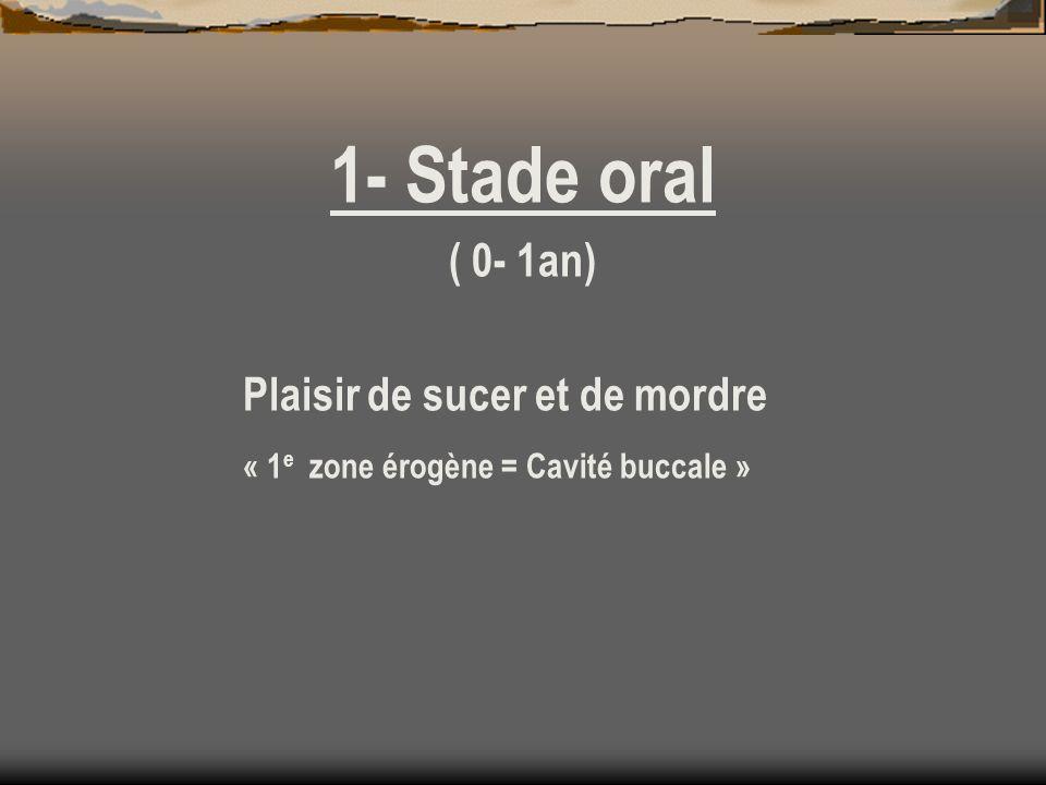 1- Stade oral ( 0- 1an) Plaisir de sucer et de mordre