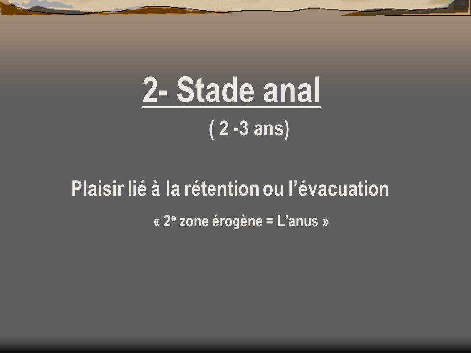 2- Stade anal ( 2 -3 ans) Plaisir lié à la rétention ou l'évacuation « 2e zone érogène = L'anus »