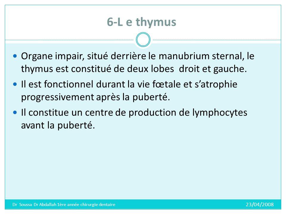 6-L e thymus Organe impair, situé derrière le manubrium sternal, le thymus est constitué de deux lobes droit et gauche.