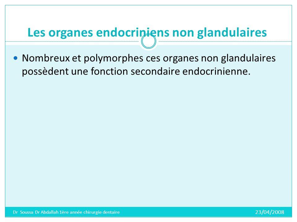 Les organes endocriniens non glandulaires