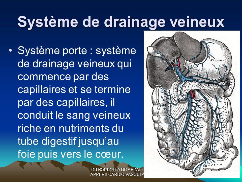 Système de drainage veineux