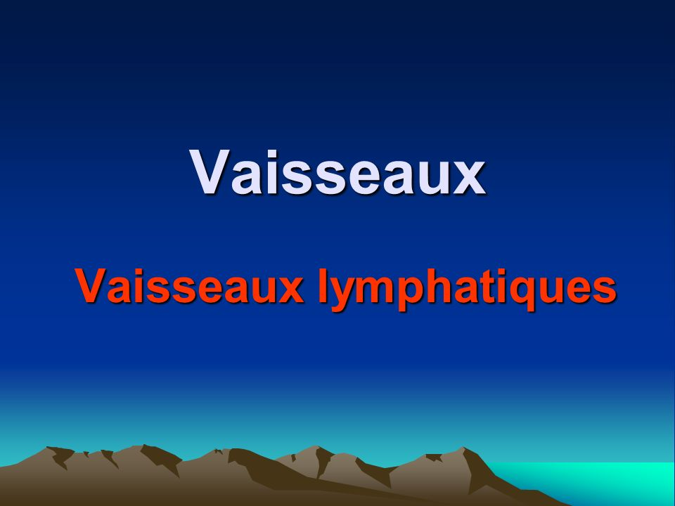 Vaisseaux lymphatiques