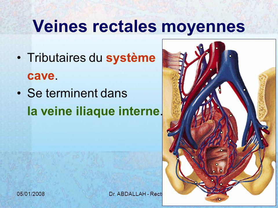 Veines rectales moyennes