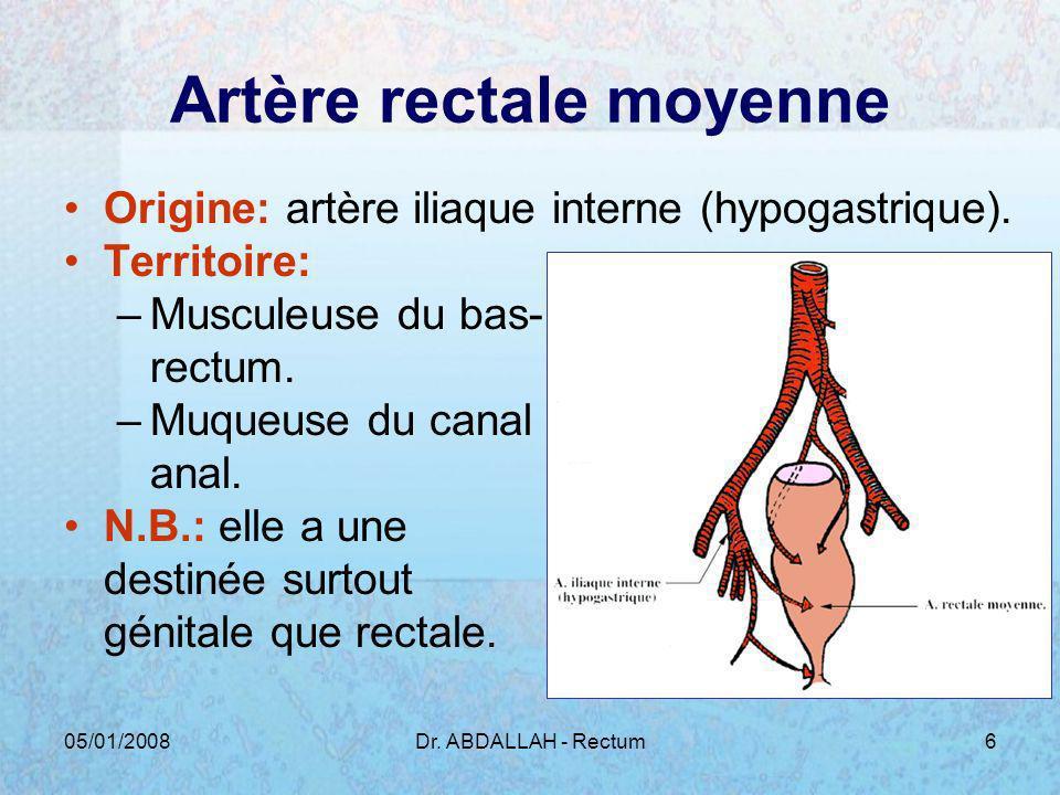 Artère rectale moyenne