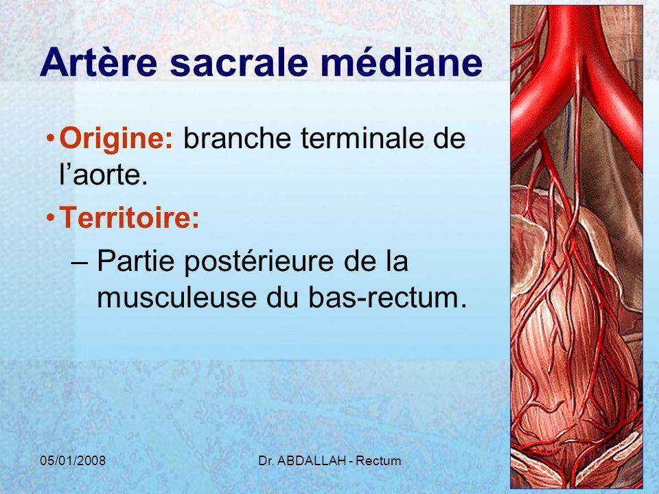 Artère sacrale médiane