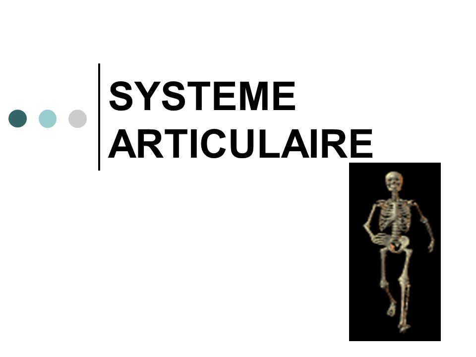 SYSTEME ARTICULAIRE