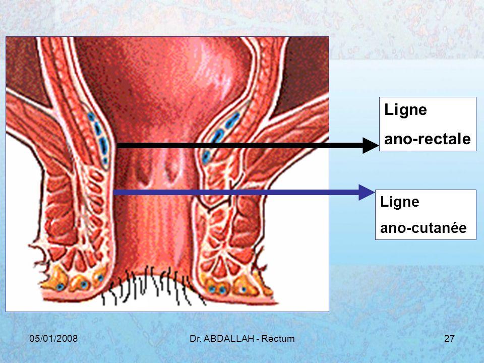 Ligne ano-rectale ano-cutanée 05/01/2008 Dr. ABDALLAH - Rectum