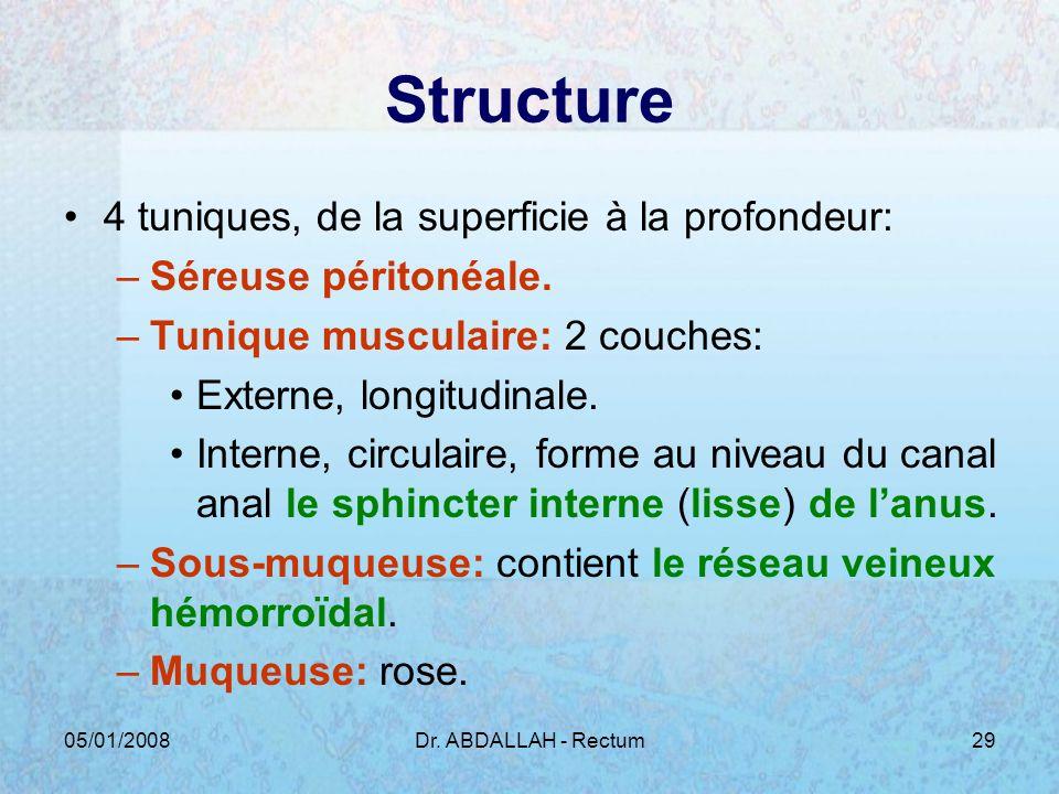 Structure 4 tuniques, de la superficie à la profondeur: