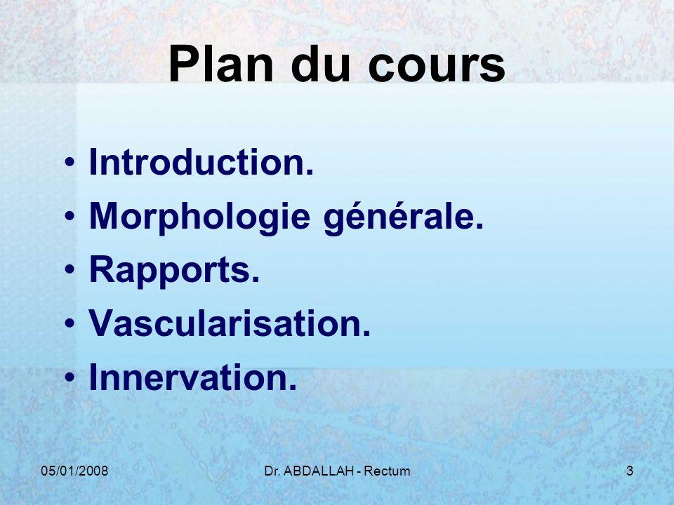 Plan du cours Introduction. Morphologie générale. Rapports.