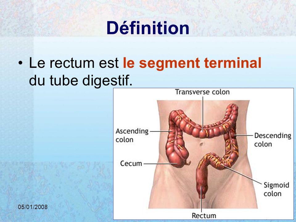 Définition Le rectum est le segment terminal du tube digestif.
