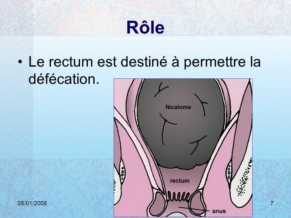 Rôle Le rectum est destiné à permettre la défécation. 05/01/2008