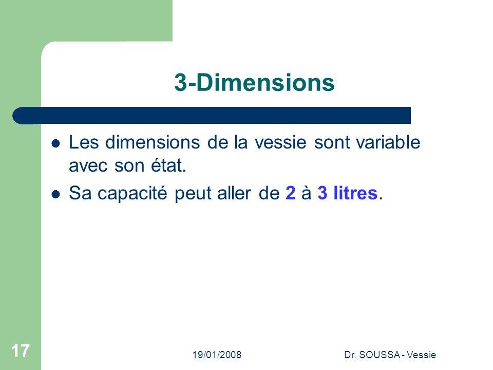 3-Dimensions Les dimensions de la vessie sont variable avec son état.