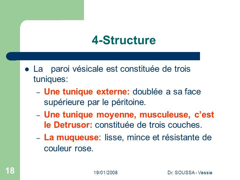 4-Structure La paroi vésicale est constituée de trois tuniques: