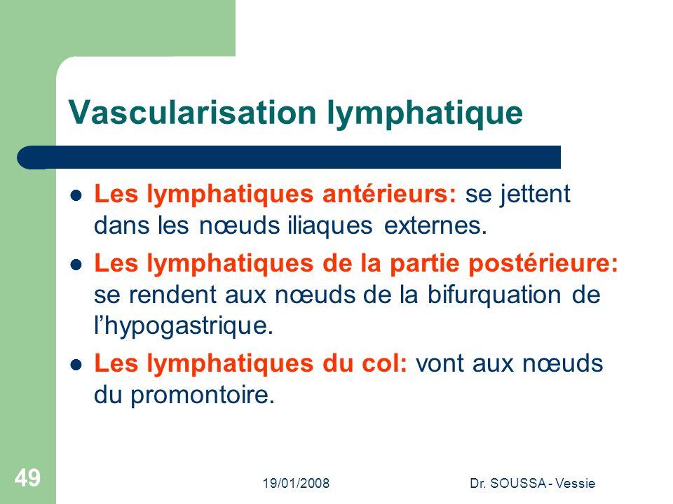 Vascularisation lymphatique